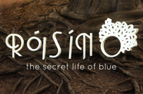 Róisín O – The Secret Life of Blue | Review
